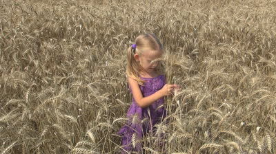 stock-footage-child-girl-playing-with-wheat-on-agriculture-field-agricultural-land-children